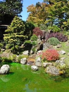 Create your own hard landscape garden and reduce water for Make your own japanese garden