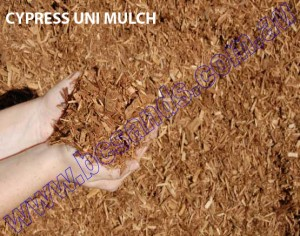 CYPRESS UNI MULCH copy