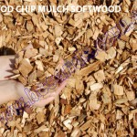 WOOD CHIP MULCH SOFTWOOD copy